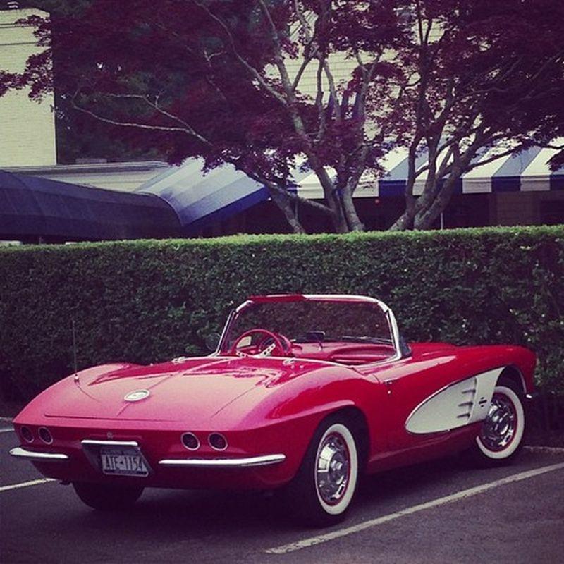 image: Hot Red at Hamptons by danielgc