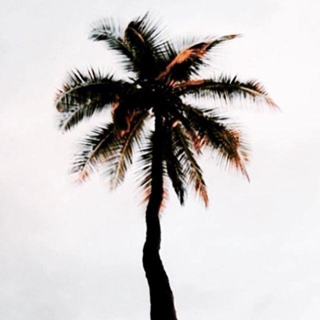 image: Da nublado  pero a mitad de senana ya y con muchas gana by angelaroberto