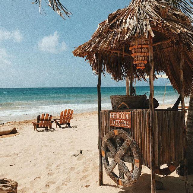 image: El lugar bonito de cocos en donde no había cocos. ?☁️ Nube bebé. by yuyacst