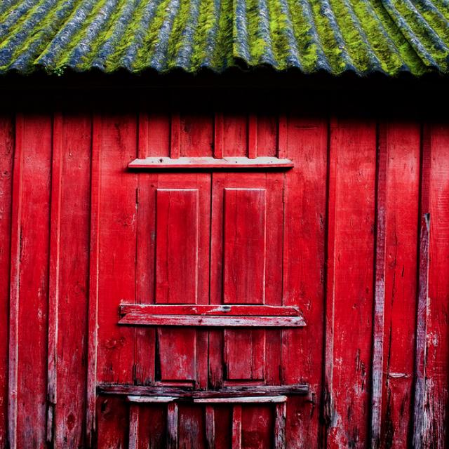 image: Rojo by sandratei