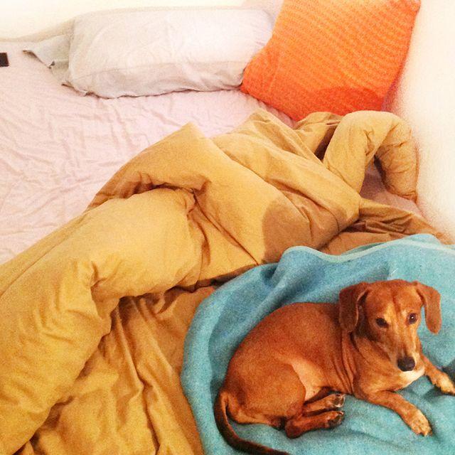 image: #12 Diego González | My Unmade Bed by alvarodols