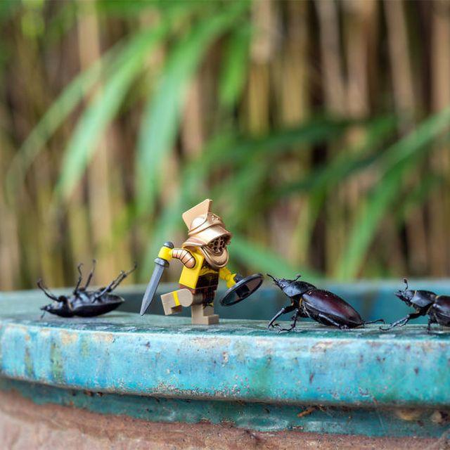 image: Miniature LEGO Adventures by neverdiscrete