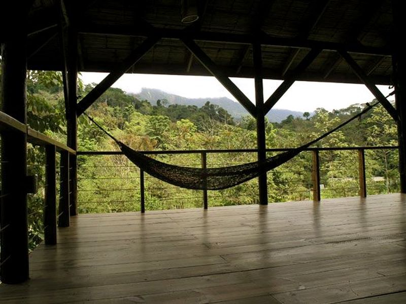 image: The Jungles of Costa Rica by larsson