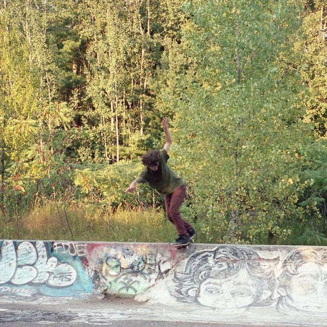 video: Into the wild... with your skateboard by triprebel