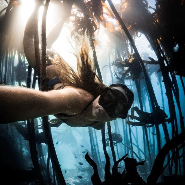 image: I'm always left with a sense of awe after exploring the kelp forests. The teeming life, the silence and the dancing light create the most incredible atmosphere. ...#gopro #wohza #capturedifferent by fainepearl