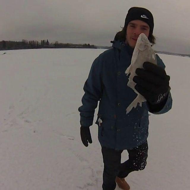 video: Helsinki 2014 by lucaspinguino