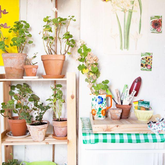image: La casa de Svea by only4four