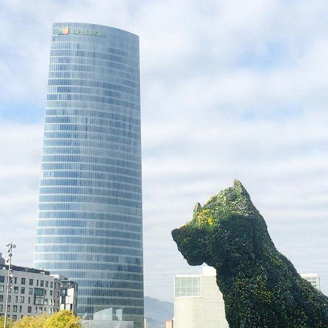 image: La torre @iberdrolagrupo El techo de #Bilbao y ejemplo by nani_arenas
