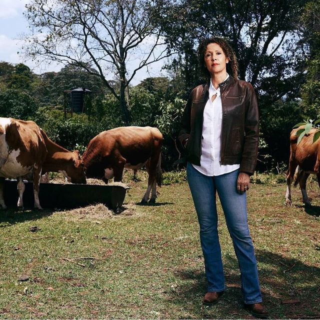 image: For many farmers across Africa, reliable information is incredibly difficult to find. They often lack access to veterinarians, details on immunization schedules, updates on local climate conditions, and more. That's why @tedfellow Su Kahumbu created iCow, by ted