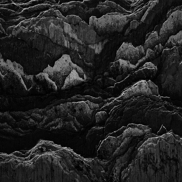 image: Black friday. by janove
