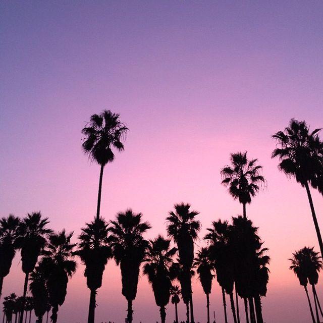image: Venice Sunsets by sayran