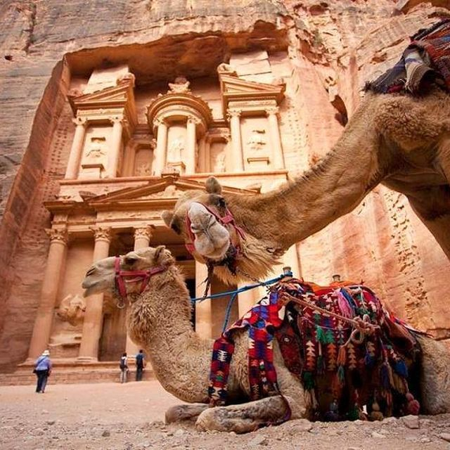 image: Jordan Shore excursions tours and packages by ObeidatOlivia