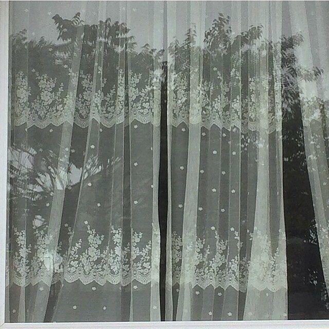 image: Veils . by isabellakilloran