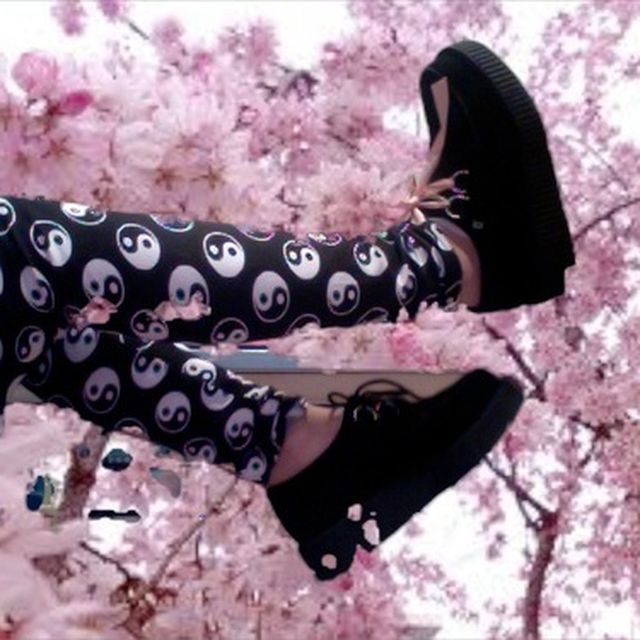 image: SPRING CREEPERS by legaragetv