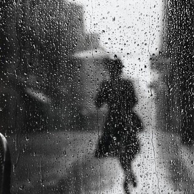 image: Rain by marina