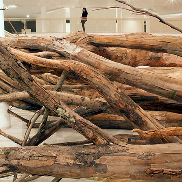 image: Henrique Oliveira Roots Installation in Sao Paulo by angelasuarez