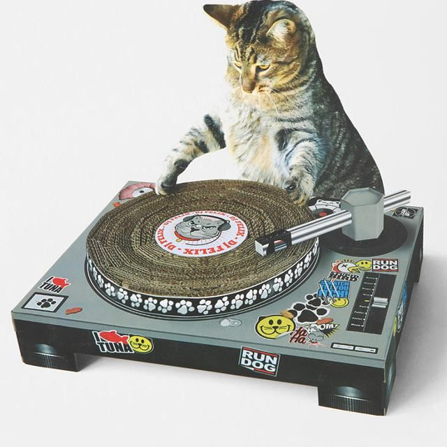 image: CAT SCRATCH DJ DECK by su-gar