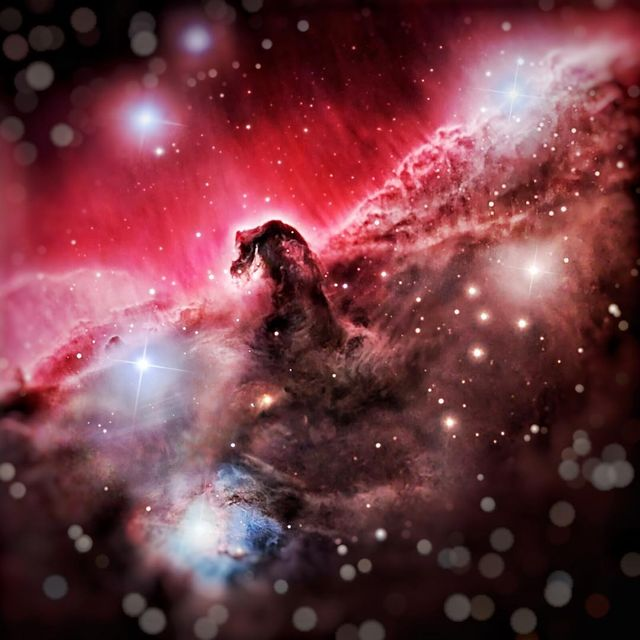 """image: Horsehead....""""A brother offended is harder to be won than a strong city: and their contentions are like the bars of a castle."""".Sculpted by stellar winds and radiation, a magnificent interstellar dust cloud by chance has assumed this recognizable... by thehubblescope"""
