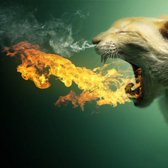 image: Fire! by javierbazan_