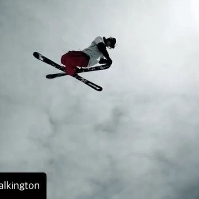 image: I believe you can fly too by twallisch