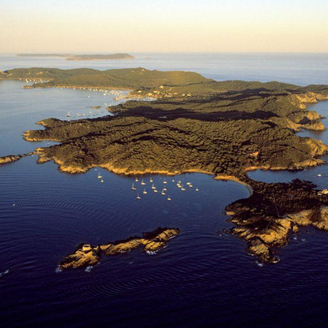image: isla de porquerolles by hamilton