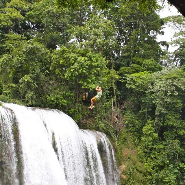 image: Canopy in Honduras by marciobarrios