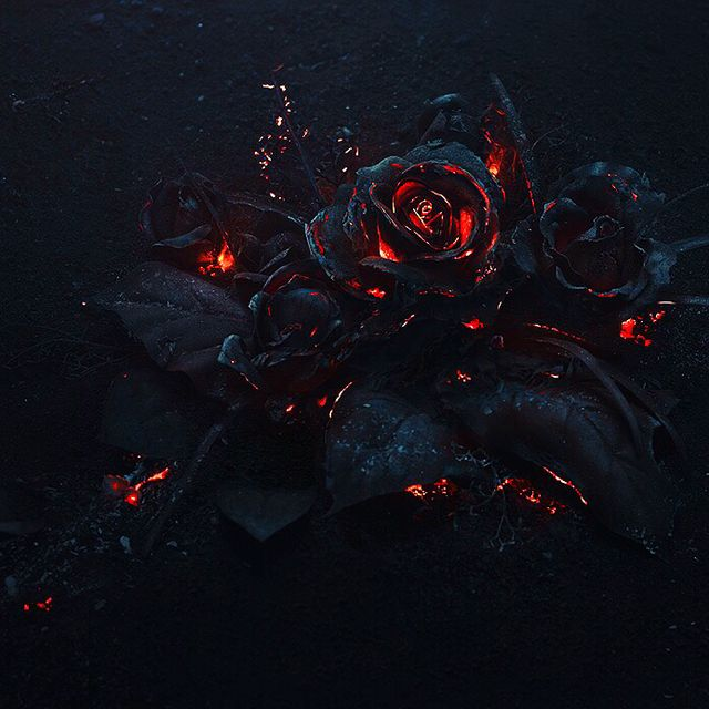 image: EVOL by Future by myles