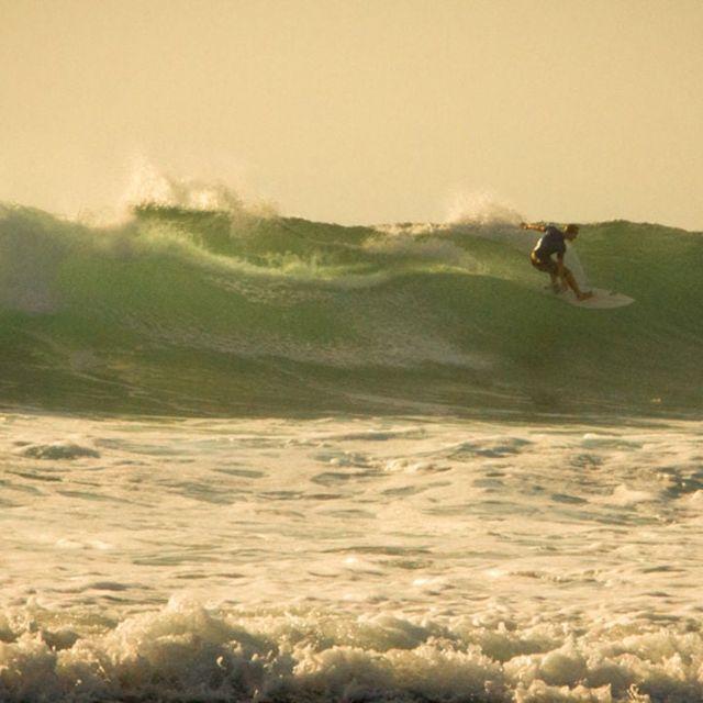 video: The Golden Sea - Bali by Saracho