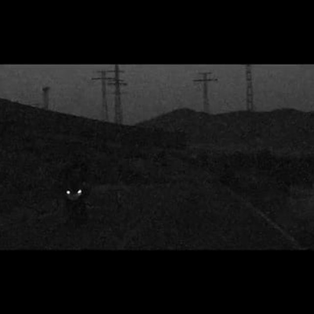 video: JACK KNIFE Summer Nights by pablocurto