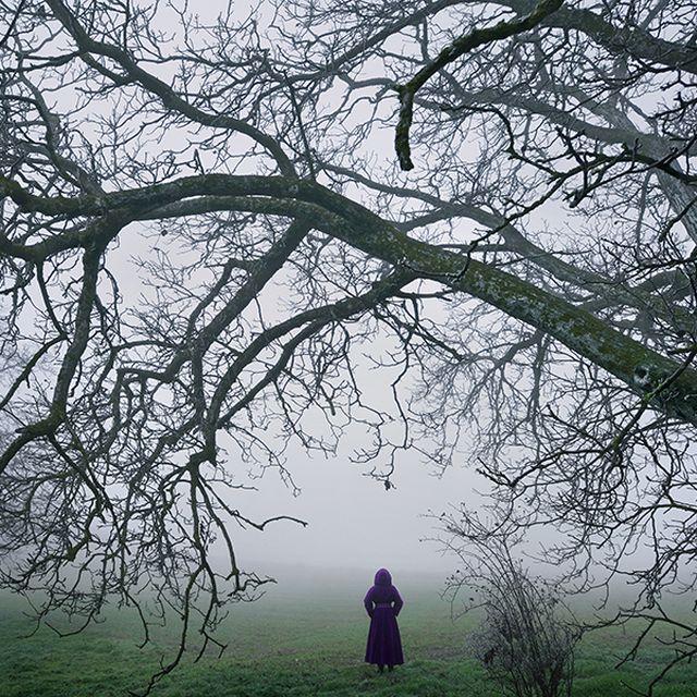 image: Serenity by aidapascual