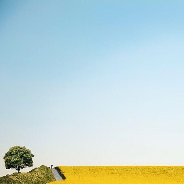image: Peaceful...----#minimalmood#ig_catalonia#justgoshot#rsa_minimal#uoonyou#lesphotographes#cerealmag#primerolacomunidad#fotoline_es#transfer_visions#igrecommend#ig_photostars#minimalha#kinfolk#ig_masterpiece#darlingmovement#clikcat#hallazgosemanal#instac by mercemillan