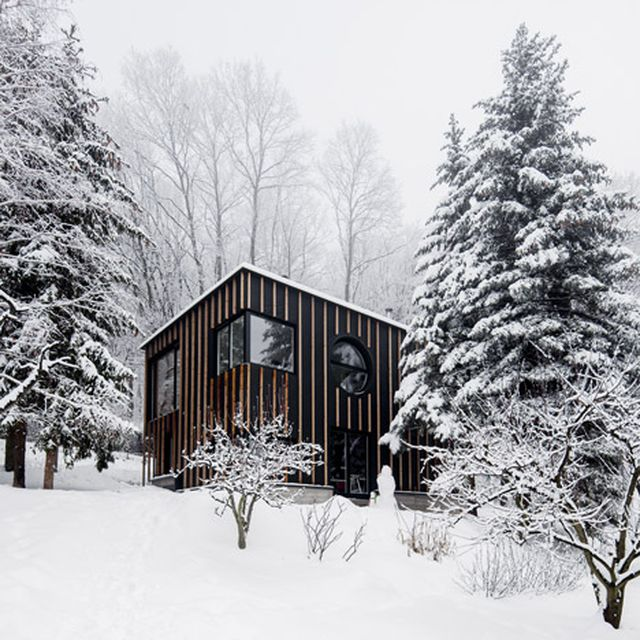image: Hungarian forest cabin built in two days by T2.a Archit by pattercoolness