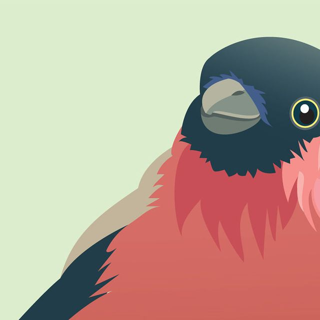 image: Did Human Language Evolve From Birdsong? by stanis