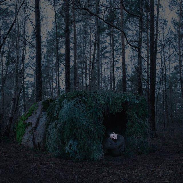 "image: ""A Forest Tale"" by gabrielisak"