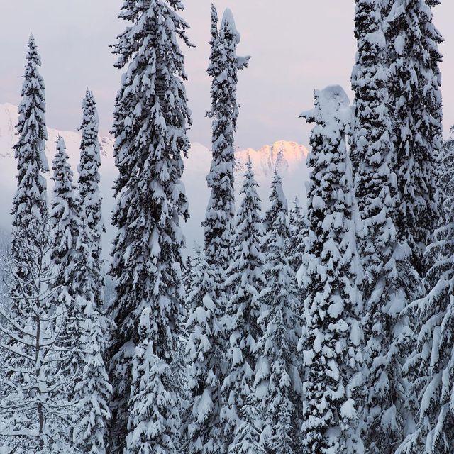 image: Winter vistas. by timclark1