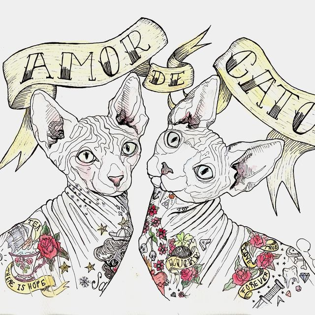 image: Amor de gato by pebbles