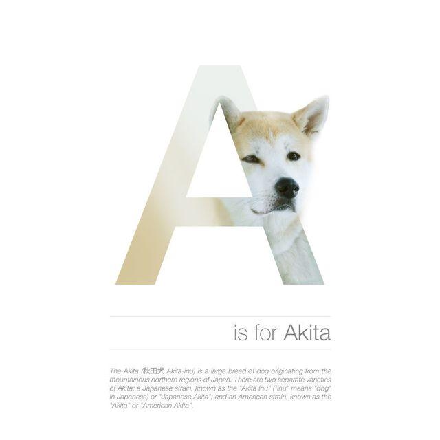image: Dog Alphabet by jenniferasos