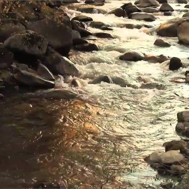 video: Cuiners per la Natura by accionatura