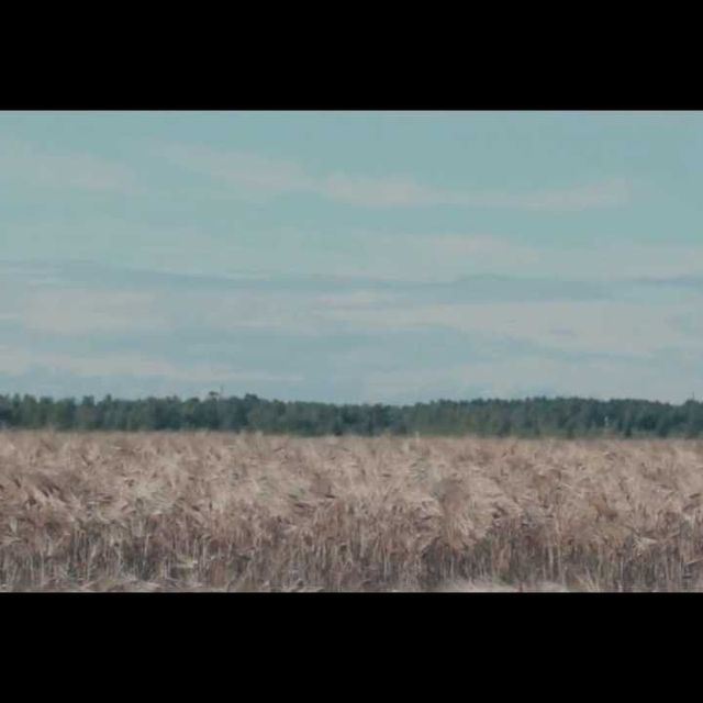 video: Satellite Stories CAMPFIRE by codec