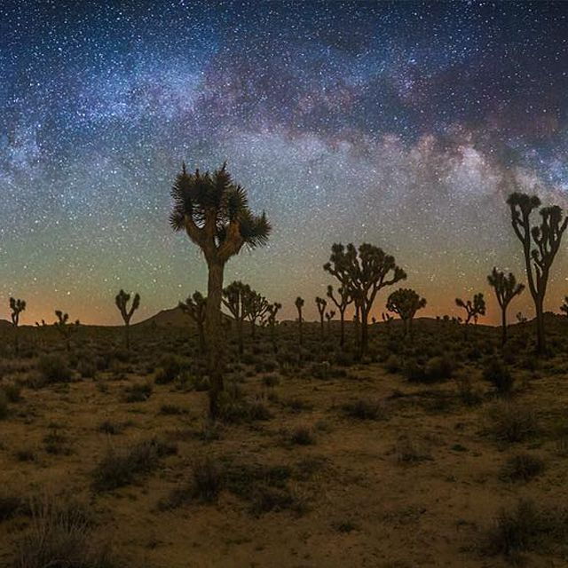 image: I'm excited to be returning to Joshua Tree National Park next weekend to lead my Milkyway Photography Workshop. Join us for this 2 night photography journey as we explore the park's dark and diverse desert. After our 2 nights of shooting on the final day, by seanparkerphotography