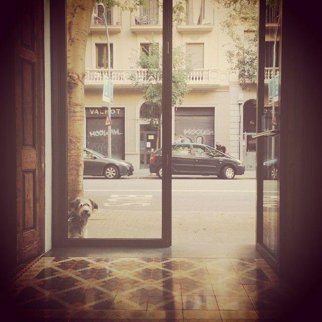 image: ... @galeribcn dentro de un rato!! Arte, la msica de... by laura_agusti
