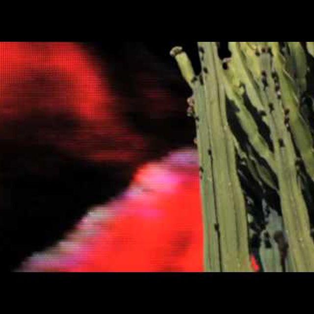video: MORENAS // entra en mi coche by discoshumeantes