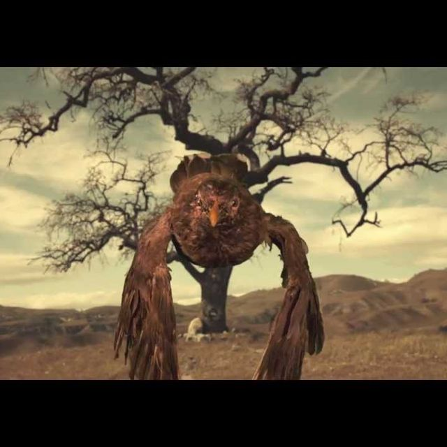 video: CRYSTAL FIGHTERS - YOU & I by begogon