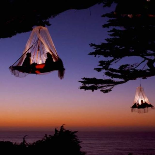 image: Tree Tent by magicberrys