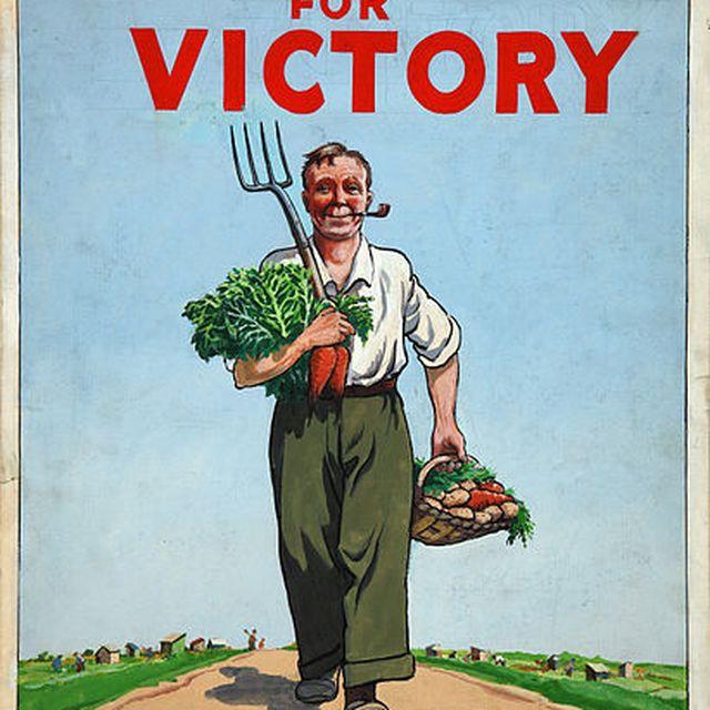 post: Victory Garden by merilin-kook