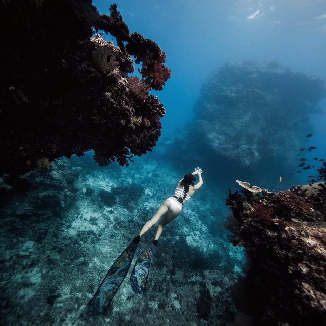 image: A friend asked me last night if I had ever experienced an altered state of consciousness. Since I've never drank or done any drugs, I said the only comparison I have is my mind when I'm in a flow freediving. When I'm underwater the way I perceive the... by chelseakauai