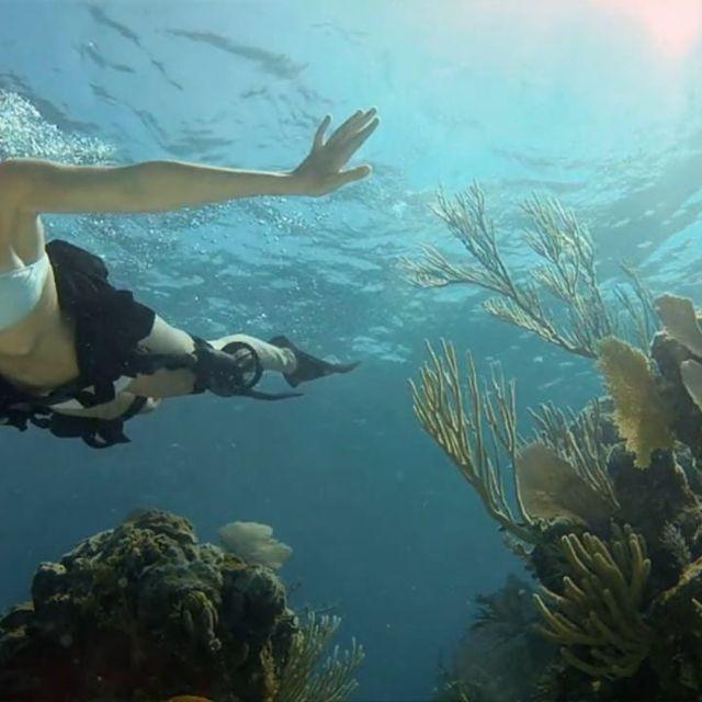 video: Shark Riders - Diving by juansh