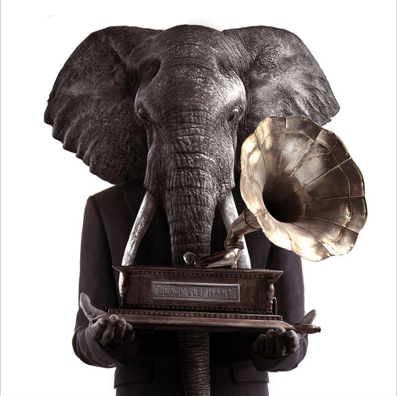 image: Black Elephant by serxarribas