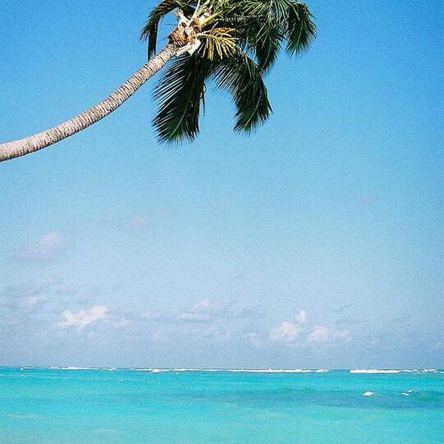 image: Caribe by rairobledo