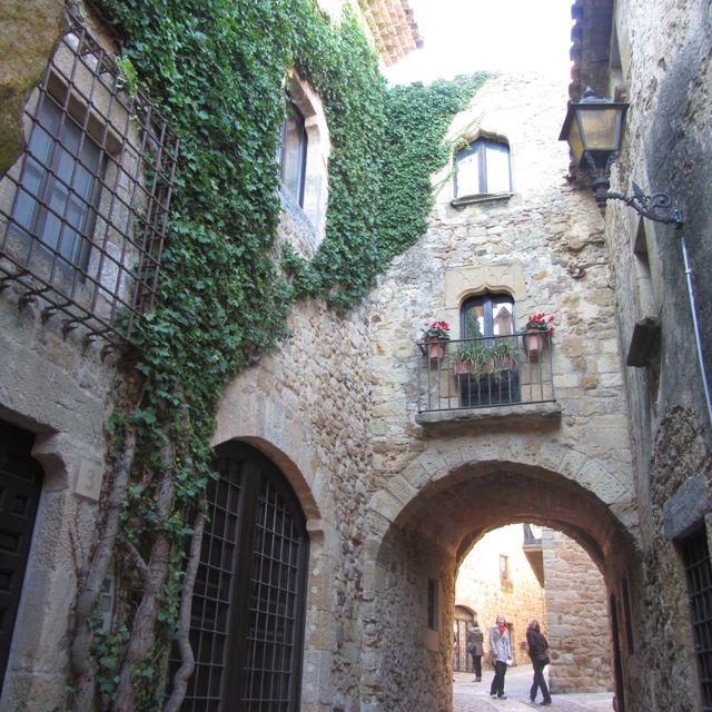 image: Somewhere near Girona... by veronik